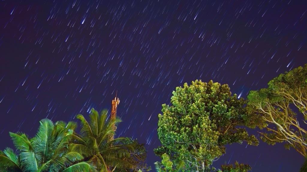 """""""Stars-Trail"""", Sirius (traço brilhante, no alto centro-esquerda), Jupiter (traço mais brilhante da foto, centro-direita, tocando a árvore)"""
